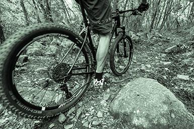 Mountain bike dating websites